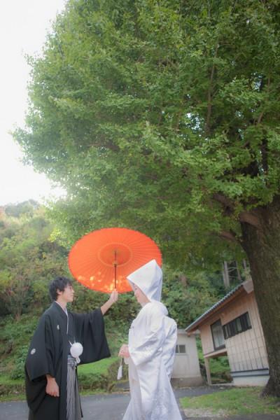 銀杏の木下で撮った和装