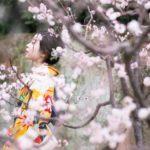 フォトウェディング 大阪 桜ロケーションおすすめスポット4選